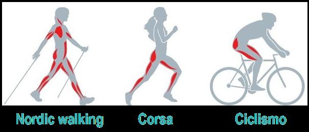 nordic walking benefici e muscoli coinvolti